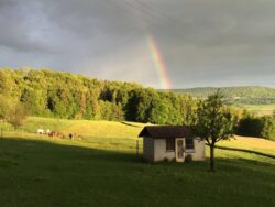 Surb Honig vom Himmelrich – 5426 Lengnau